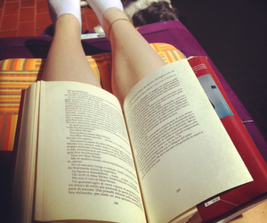 book, story, and sunlight image