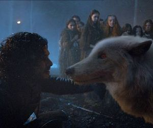 ghost and jon snow image