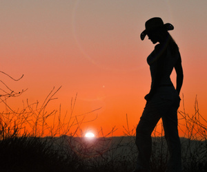 sunset and silhouette image