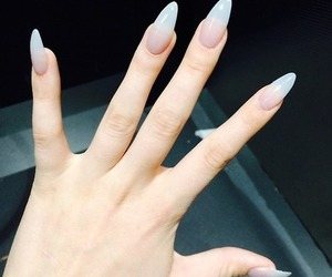 claws, clear, and oval image
