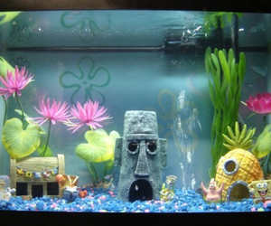 spongebob, fish, and aquarium image