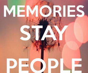 life, love, and memories image