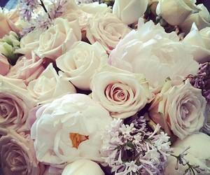 beautiful, fashion, and flowers image
