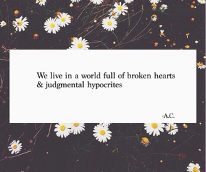 broken, daisies, and love image