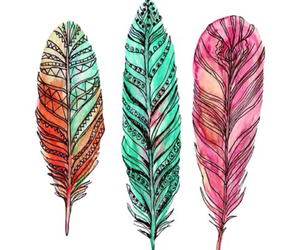 colourful, tumblr, and feathers image
