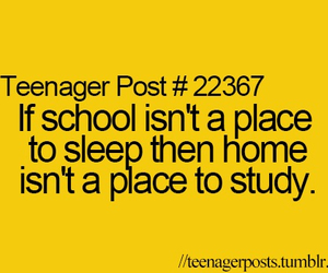 school, sleep, and study image