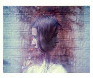 inspiration, photography, and polaroid image