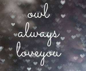 owl, love you, and love image