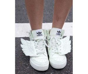 adidas, fly, and white image