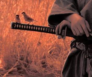 birds, katana, and sword image