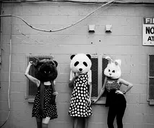 animals, black and white, and hipster image