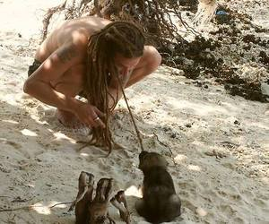 dreads and dog image