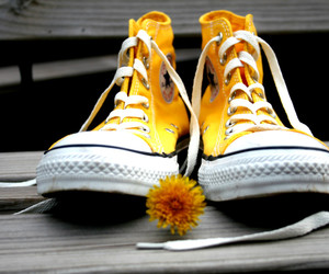 all star, flower, and yellow image