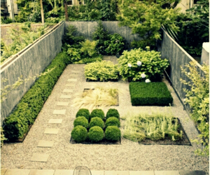 green, zen garden, and photography image