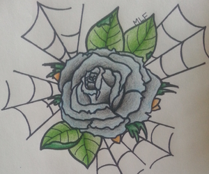 drawing, rose, and spider web image