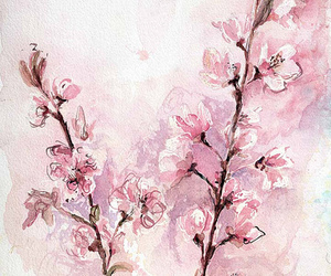 bloom, cherry, and fine art image