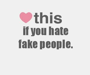 hate, makeup, and fake people image