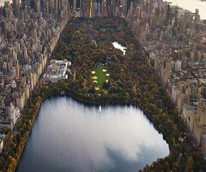 new york, Central Park, and city image