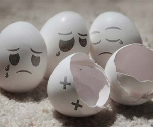 art, eggs, and funny image