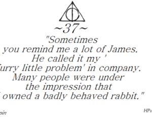 harry potter, quote, and remus lupin image