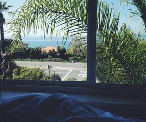 palms, paradise, and sky image