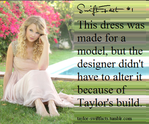 Taylor Swift, dress, and fact image