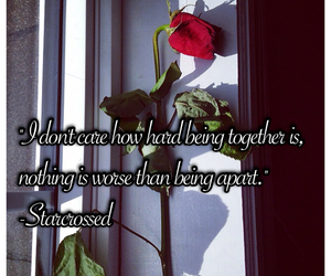 love quote, quote, and red rose image