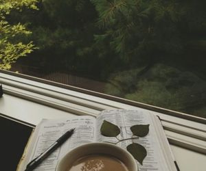 book, coffee, and nature image
