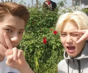 exo, instagram, and suho image