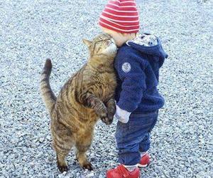 baby, cat, and hug image