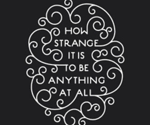 quotes, strange, and text image