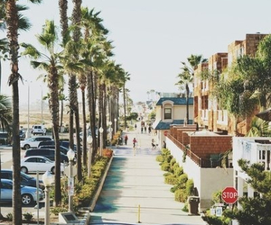 summer, beach, and california image