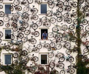 bicycle and bike image