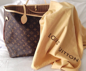 bag, Louis Vuitton, and style image