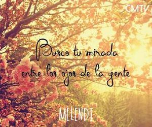 cancion, frase, and quotes image