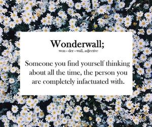 love, wonderwall, and flowers image
