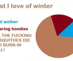 funny, winter, and hoodies image