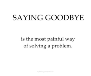 goodbye, text, and quote image