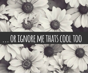 flowers, ignore, and quote image