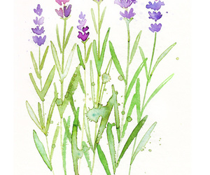 flowers, art, and lavender image