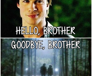 damon and the vampire diaries image