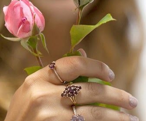 beautiful, rosa, and flor image