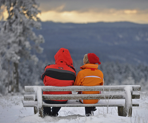 bench, couple, and winter image