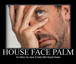 facepalm, house, and palm image