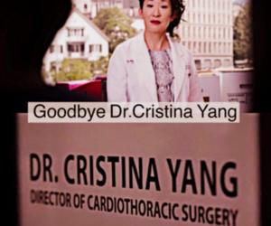 cristina yang, grey's anatomy, and farewell to cristina image