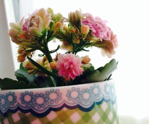 cup, flowers, and floral image