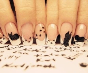 nails, cat, and nail art image