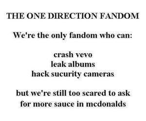 one direction, fandom, and directioners image