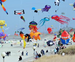 beach, colorful, and festival image