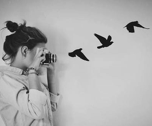 bird, girl, and photography image